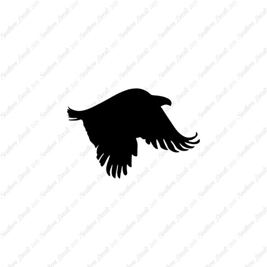 Eagle Flying Bird