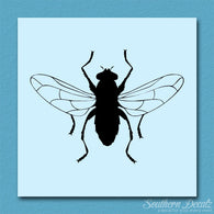 Gnat Fly Insect