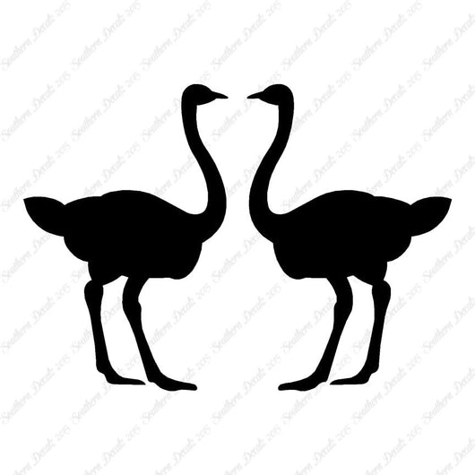 Pair Of Ostrich Ostriches