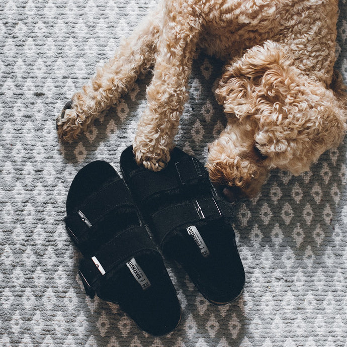 Shop Our Birkenstock Shearling Collection!