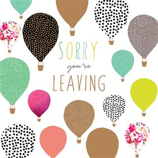 Sorry You're Leaving by Jaz And Baz