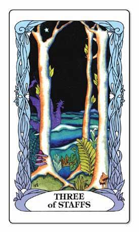 Tarot of A Moon Garden Deck and Book Set