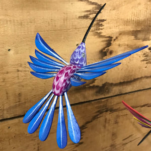 Blue/Purple Hummingbird