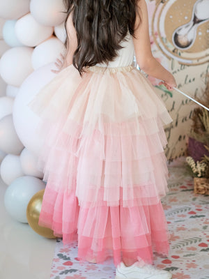 Minnie Tutu Skirt | Pink Ombre | Pre-order