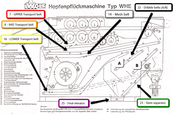 Wolf hop harvester transport belts