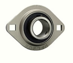 20mm Two-bolt Flange Bearing Unit | SBPFL204