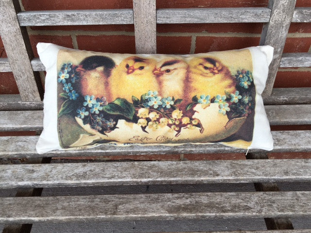 pillow cover - chicks with flowers