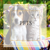Custom Candles for Pet Owners at Premier Personalized Candles