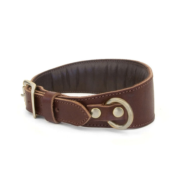 TAPERED DOG COLLAR in Brown Bridle Leather