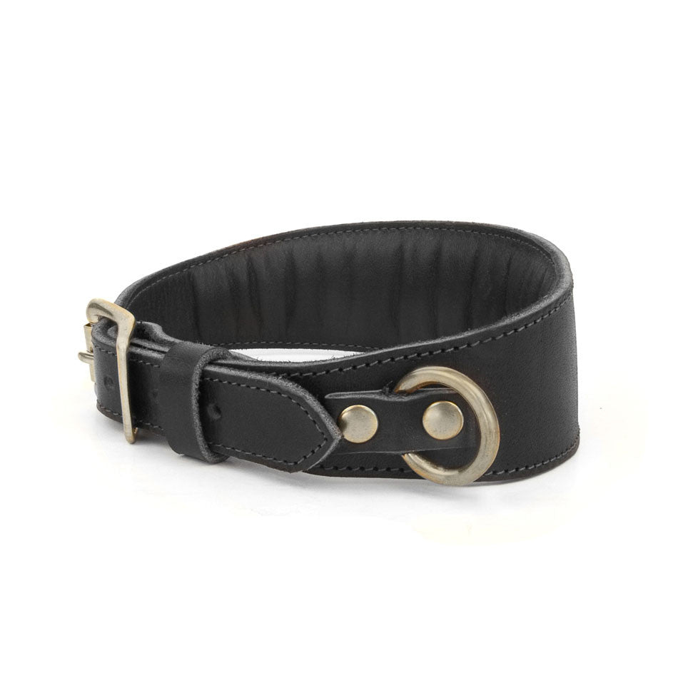 TAPERED DOG COLLAR in Black Bridle Leather