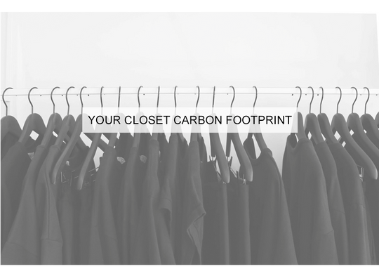 Take the Closet Carbon Footprint Test