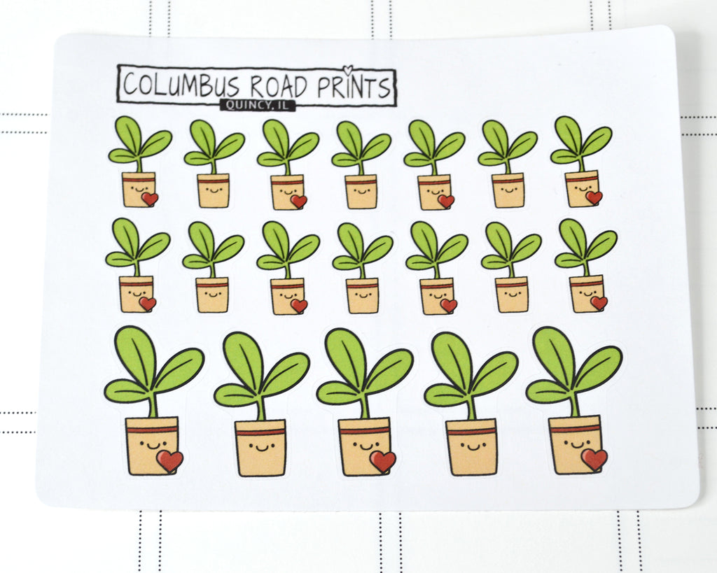 Water plant reminders, potted plants