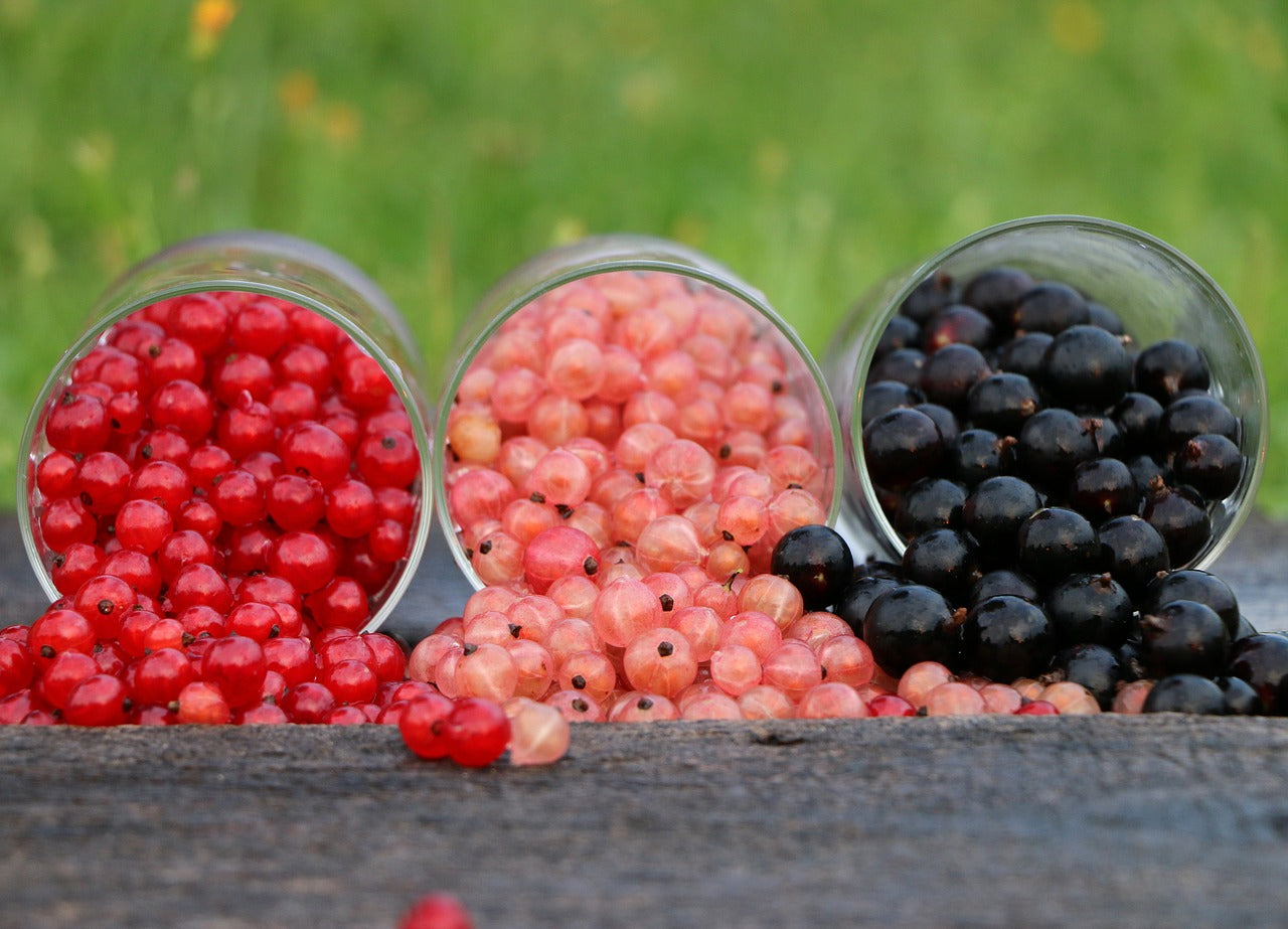 Superfruit Blackcurrants - The powerhouse of vitamins!