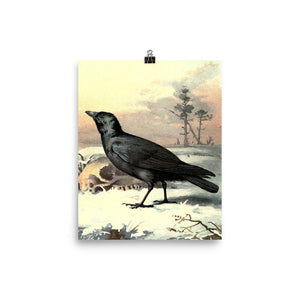 Curious Carrion Crow Vintage Art Poster-Art Poster-Venture Modern-8 x 10-Enhanced Matte Paper-Venture Modern