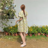 NANCY FLORAL DRESS