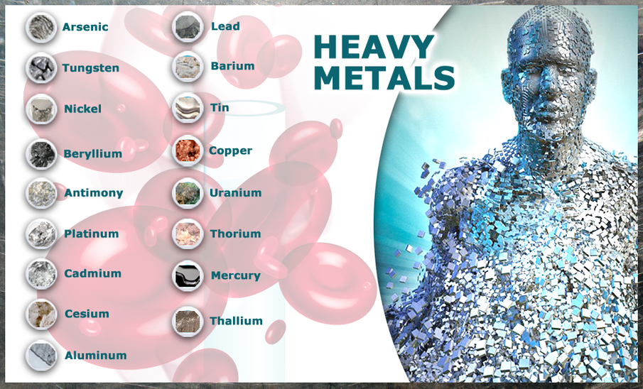 What are the health effects of heavy metals?