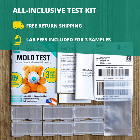 mold test kit for home