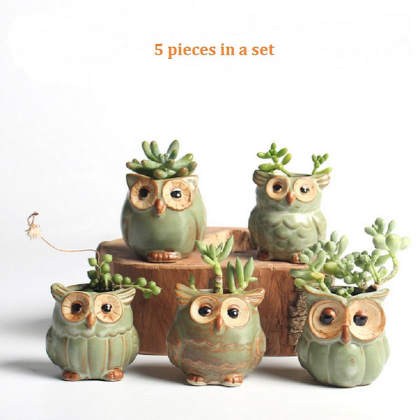 Set Of 5 Owl Flower Pots ( 6$ Per Pot )