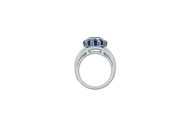 Classic 75 Twist Oval Blue Sapphire Ring set in White Gold