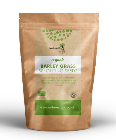 Organic Barley Grass Sprouting Seeds - Natures Root