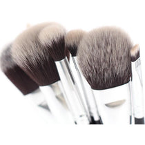 10Pc Professional Makeup Brush Set