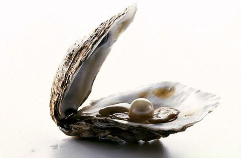 $5 Live Oyster opening, Loose Pearl or Open at Home Oyster
