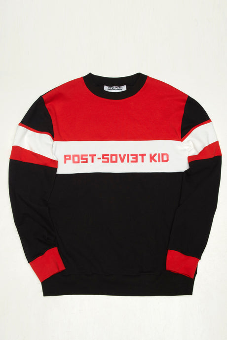Mens Sweatshirt With