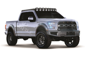 Ford F150 15+ Headlight Projector Package