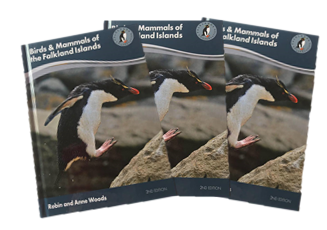 Birds and Mammals of the Falkland Islands