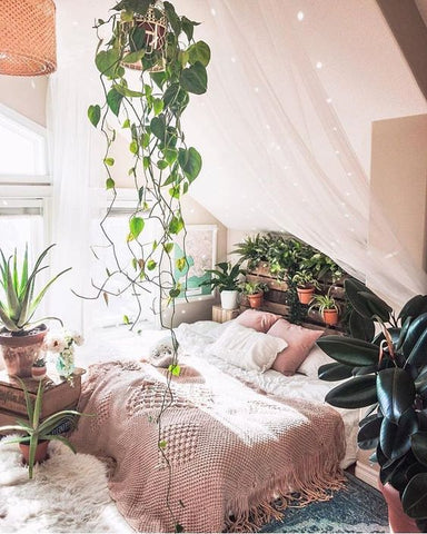 glamping boho canopy nature greenery bedroom trends interiors vavoom
