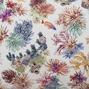 Bed Sheets Kip & Co Great Barrier Reef Cotton Fitted Sheet Queen