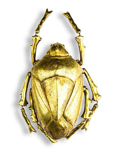 Gold Beetle Wall Decor