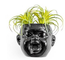 Load image into Gallery viewer, Black Baby Face Wall Pot Laughing