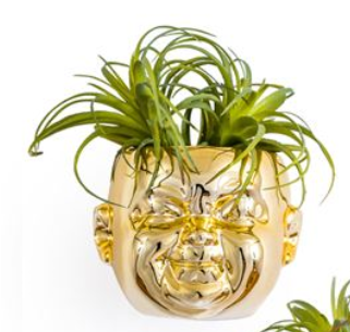 Gold Baby Face Wall Pot Sleeping