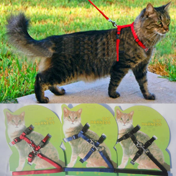 Hot Sale 3 Colors Nylon Products Cat Harness And Leash For Animals Adjustable Pet Traction Harness Belt Cat Kitten Halter Collar