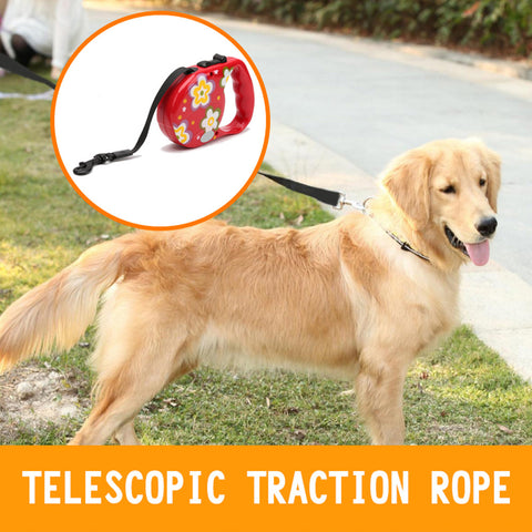3M 5M Automatic Retractable Dog Leashes Dogs Are Free Activities Safety Convenience Puppies And Big Dogs Are Applicable CL117