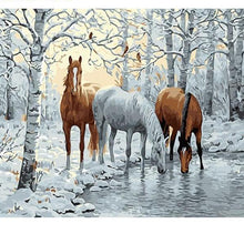 Load image into Gallery viewer, Wild Horses - Paint-it ™