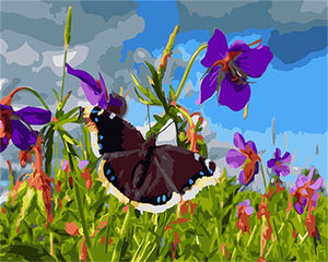 Paint By Numbers - Flower And Butterfly