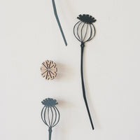 A pair of poppy seed heads
