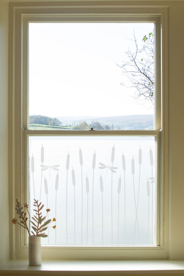 Dragonfly Window Film Hannah Nunn