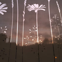 Tall Daisies Window Film