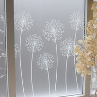 Allium Window Film