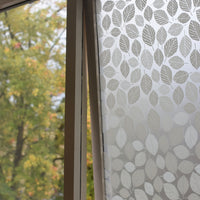 Beech Leaves Window Film
