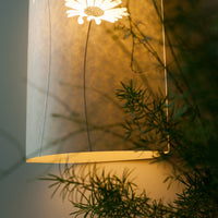 Daisy Wall Lamp