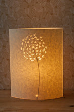Small Oval Allium Table Lamp (for clearance) £55