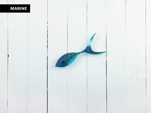 SHOALING FISH - SINGLE FISH - Marine
