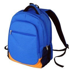 Rexin School Bag