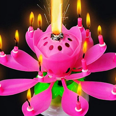 YM Traders Musical Flower Rotating Birthday Candle Pink Utopia PK