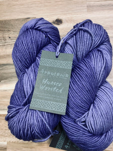 Araucania Huasco Worsted color 307