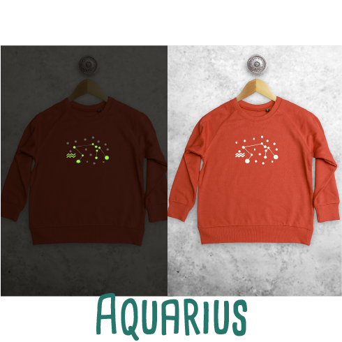 Star sign glow in the dark kids sweater